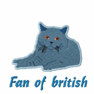 british shorthair borderie