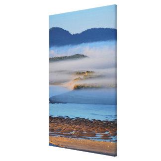 Brouillard de matin au-dessus de baie toile