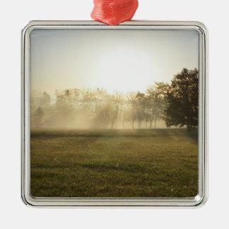 Brouillard de matin d'Ozarks Ornement Carré Argenté