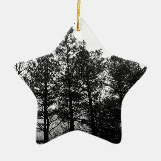 Brouillard hanté éthéré brumeux en bois de forêt ornement étoile en céramique