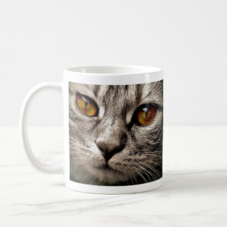 Brown a observé le chat gris mug