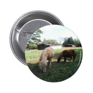"""Brown blond, deux chevaux miniatures, """"petit poney badge rond 5 cm"""