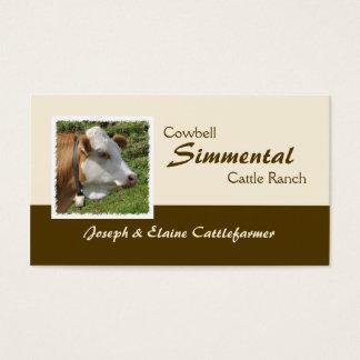 Brown et vache blanche à simmenthal avec la cartes de visite