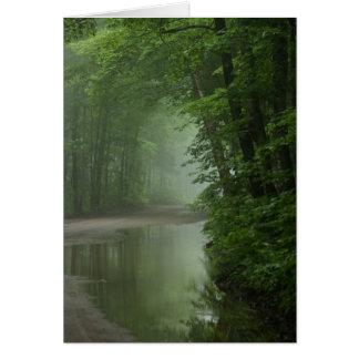 Brume dans la forêt carte de vœux