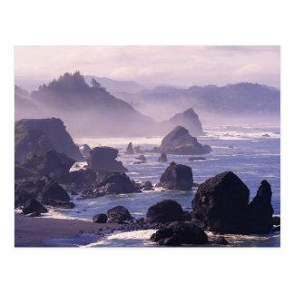 Brume de matin le long de côte de l'Orégon près de Carte Postale