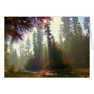 Brume de matin sur la carte de voeux de photo de