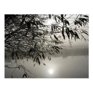 Brume et carte postale d'ombre
