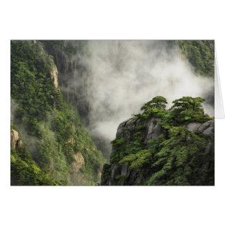 Brume parmi les crêtes et les vallées du canyon carte de vœux