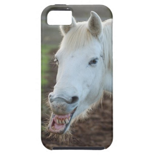 Bucky le mustang coques iPhone 5