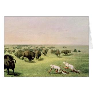 Buffalo de chasse camouflé cartes