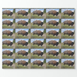 Buffalo sur le papier d'emballage de jour papier cadeau