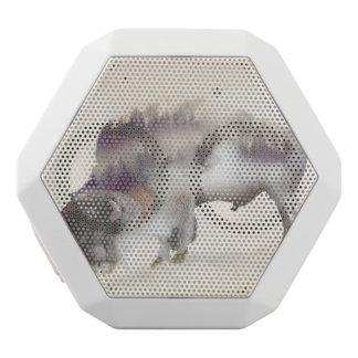 Buffle-double buffle-paysage exposition-américain haut-parleurs blancs sans-fils