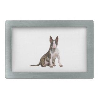 Bull-terrier b - Brindle et blanc Boucles De Ceinture