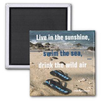 Buts de vie de soleil et de mer aimant