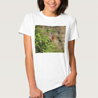Butterfly… T-shirts