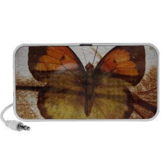 butterflyspeaker mini haut-parleurs