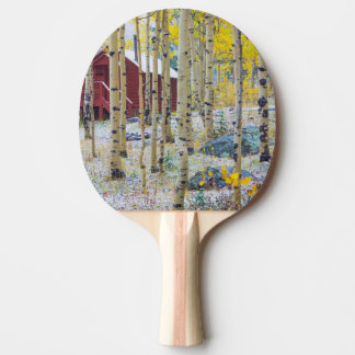 Cabine solitaire grand de MESA dans une forêt Raquette De Ping Pong