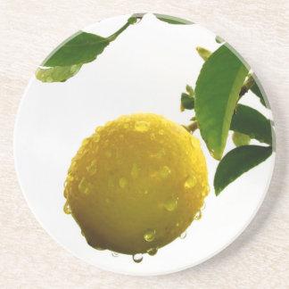 Caboteur - citron humide dessous de verre