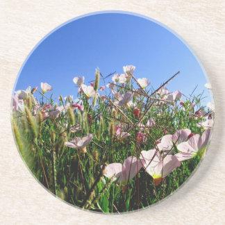 Caboteur - fleurs sauvages dessous de verres