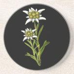 Caboteur floral d'edelweiss dessous de verres