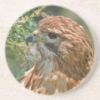 Caboteur Rouge-Épaulé de faucon Dessous De Verre En Grès
