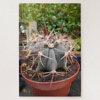Cactus avec de grandes épines puzzle