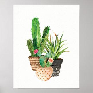 Cactus d'aquarelle et groupe succulent poster