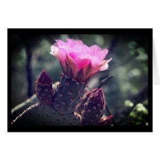 Cactus de Beavertail de désert Carte De Vœux