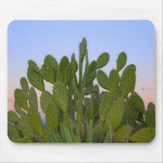 Cactus et sisal dans la forêt sèche tapis de souris