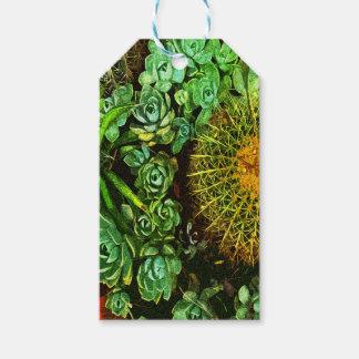 Cactus Étiquettes-cadeau