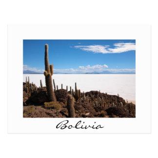 Cactus géant à la carte postale de frontière de