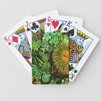 Cactus Jeu De Cartes