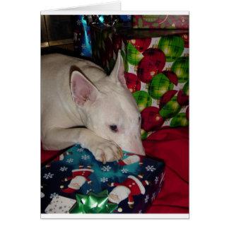 cadeau de Noël anglais de bull-terrier Carte De Vœux