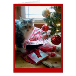 Cadeau de Noël s'ouvrant éclaté par chat tôt Carte De Vœux