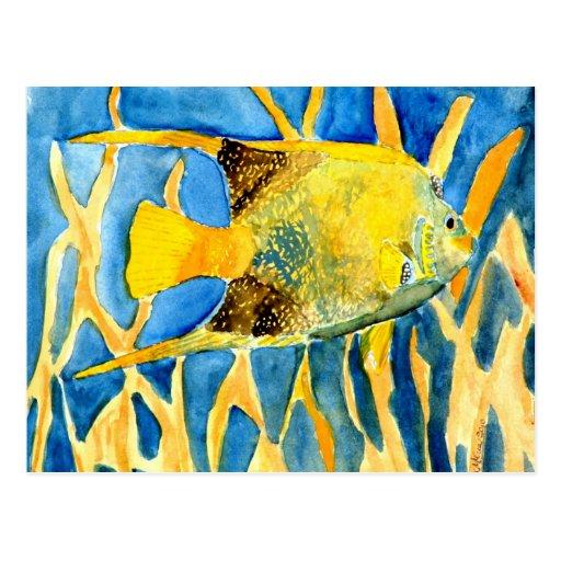 cadeau tropical de peinture d 39 art de vie marine de carte postale zazzle. Black Bedroom Furniture Sets. Home Design Ideas