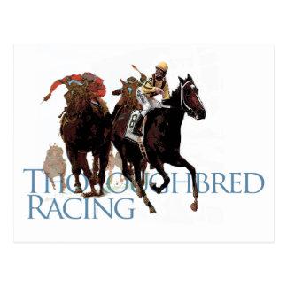 Cadeaux de course de chevaux de pur sang carte postale