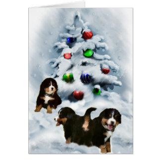 Cadeaux de Noël de chien de montagne de Bernese Cartes