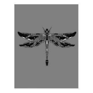 Cadeaux gris de libellule noire et blanche par des carte postale
