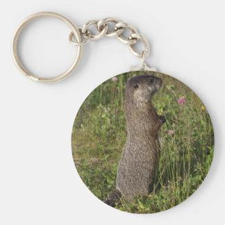 Cadeaux Jaune-Gonflés de Marmot Porte-clefs