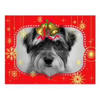 Cadeaux rouges de cadre de photo de Noël Cartes Postales
