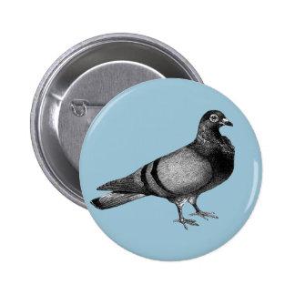 Cadeaux vintages de pigeon badge