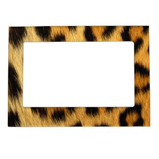 Cadre Magnétique Poster de animal de peau de léopard
