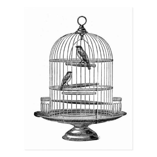 cage oiseaux vintage avec la carte postale. Black Bedroom Furniture Sets. Home Design Ideas