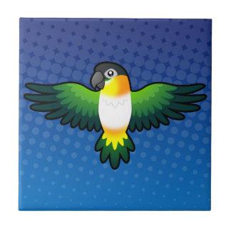 Caïque/perruche/Pionus/perroquet de bande dessinée Petit Carreau Carré