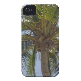 Caisse audacieuse de Blackberry de palmier Coque iPhone 4 Case-Mate