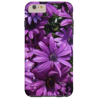 Caisse de photo de marguerite africaine coque iPhone 6 plus tough