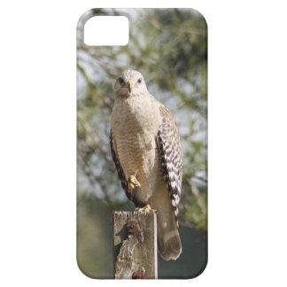 Caisse épaulée rouge de l'iPhone 5/5S de faucon à Coques iPhone 5 Case-Mate