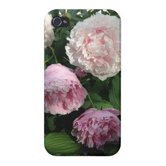 Caisse rose de la fleur Iphone4 de pivoine Étuis iPhone 4