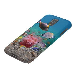Caisse tropicale de la galaxie S5 de Samsung de Protections Galaxy S5