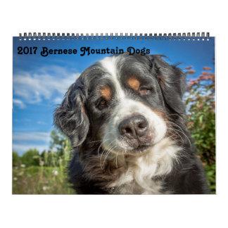 Calendrier 2017 de chiens de montagne de Bernese